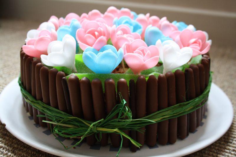 Flowery Birthday Le 5 Fev 11 La Maison Des Hippos