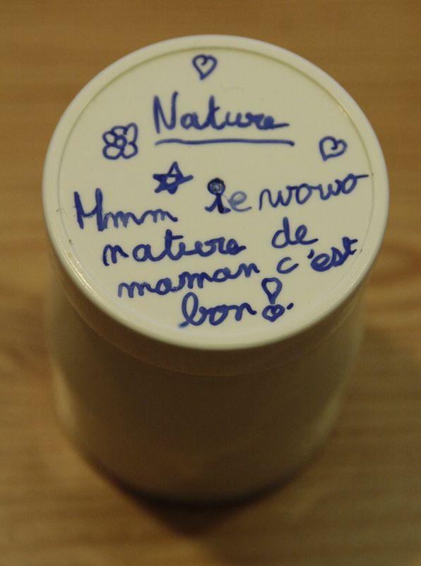 yaourt nature 2
