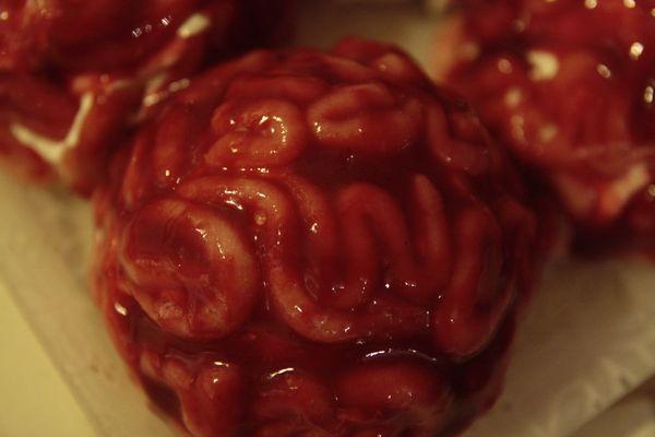 cervelles 2